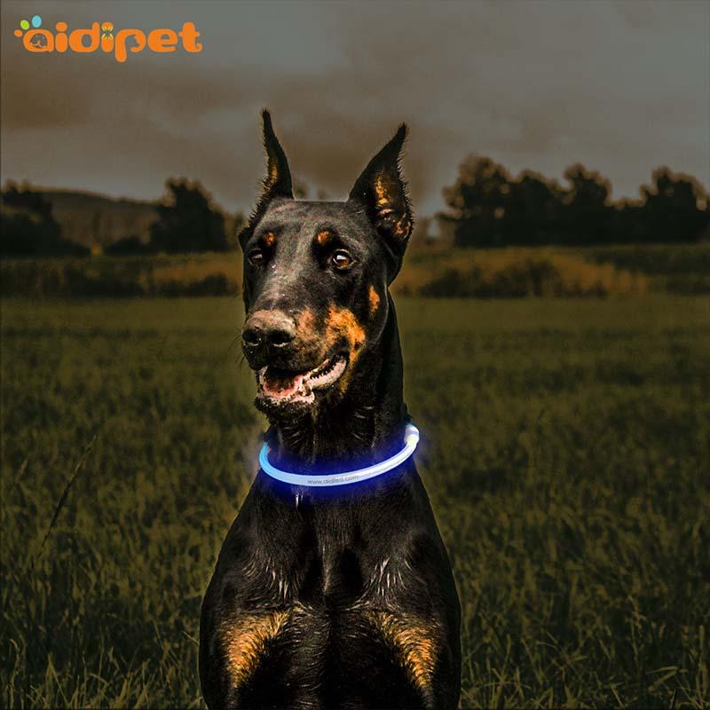 - Aidi-c1 Led Dog Collar-1