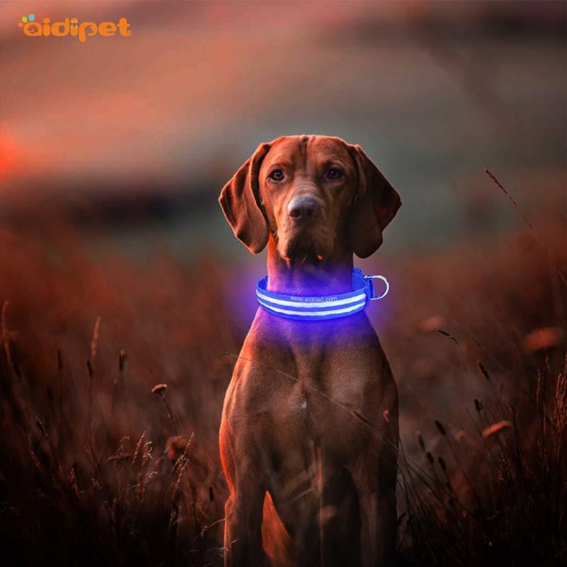 flashing rechargeable led dog collar with good price for outdoors
