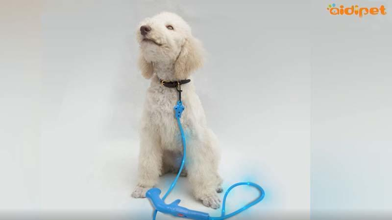 AIDI-L7 The product video-dog leash manufacturers