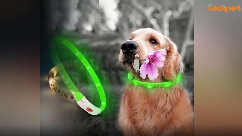 AIDI-C10 Safety Light Dog Collar Video