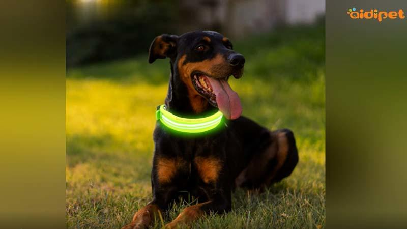 AIDI-C23 Waterproof Led Light Dog Collar Video