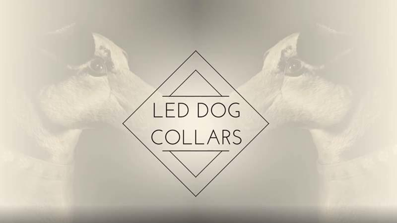 AIDI-C14  AIDI-C5  Usb Light Dog Collar