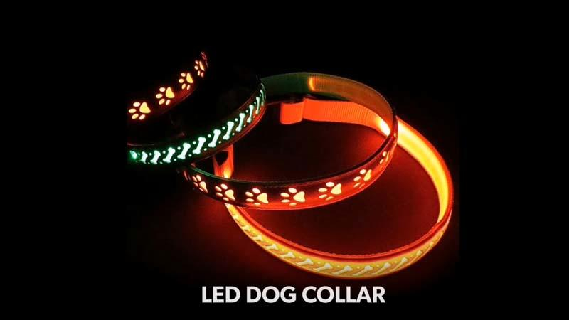 AIDI-C14 Best Glowing Dog Collar  Video