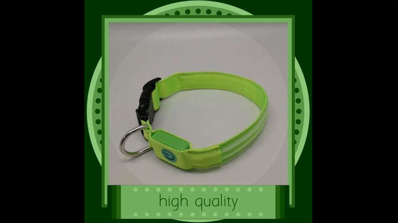 AIDI-C16 Video of Glow In The Dark Dog Collar Small
