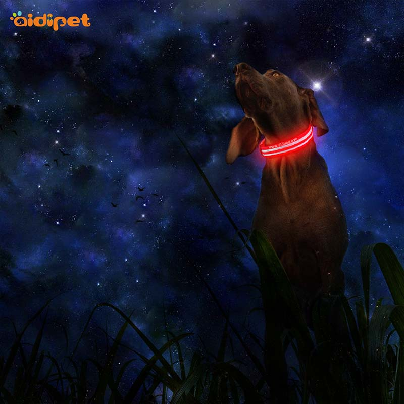 AIDI-Best Light Up Dog Collar | Aidi-c18 Metal Buckles Usb Rechargeable-1