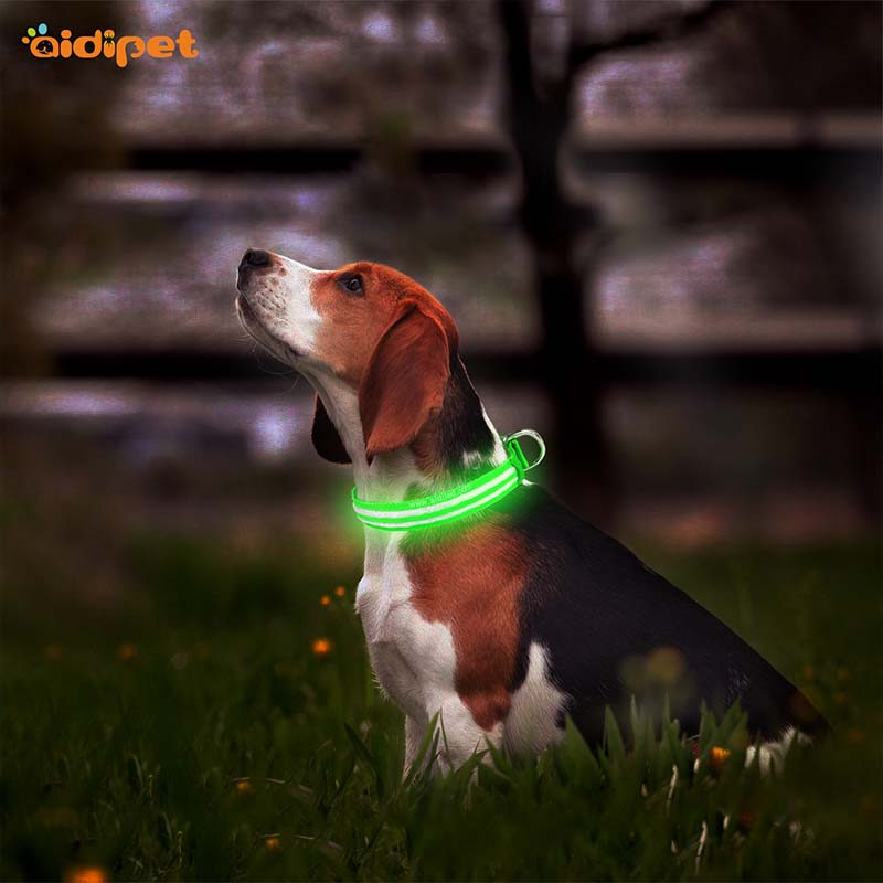AIDI-Best Light Up Dog Collar | Aidi-c18 Metal Buckles Usb Rechargeable-2