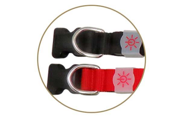 AIDI-Best Waterproof Lighted Dog Collars Aidi-c20 Wholesale Pet-3