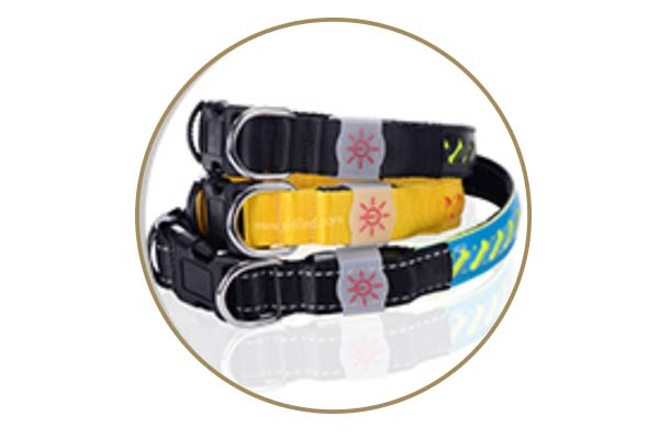 -Manufacture | Aidi-c14 Rechargeable Flashing Led Dog Collar-6