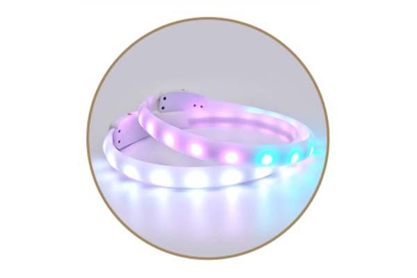 -Led Rgb Colorful Pet Collar Aidi-c6-shenghong-6