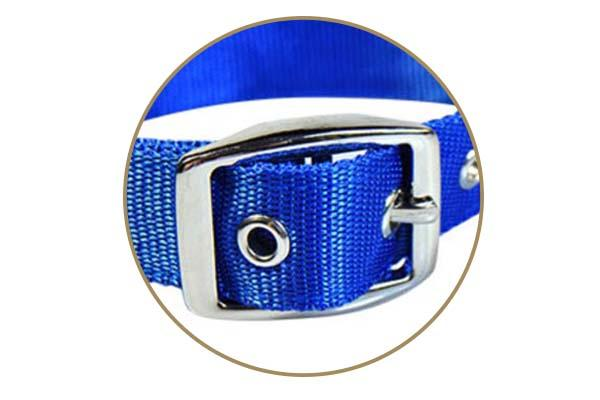 printing custom pet collars with good price for walking