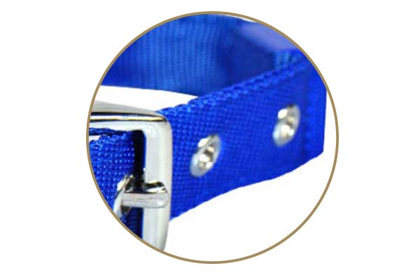 printing custom pet collars with good price for walking-5