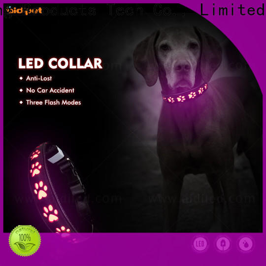 printing light up dog collar factory for park