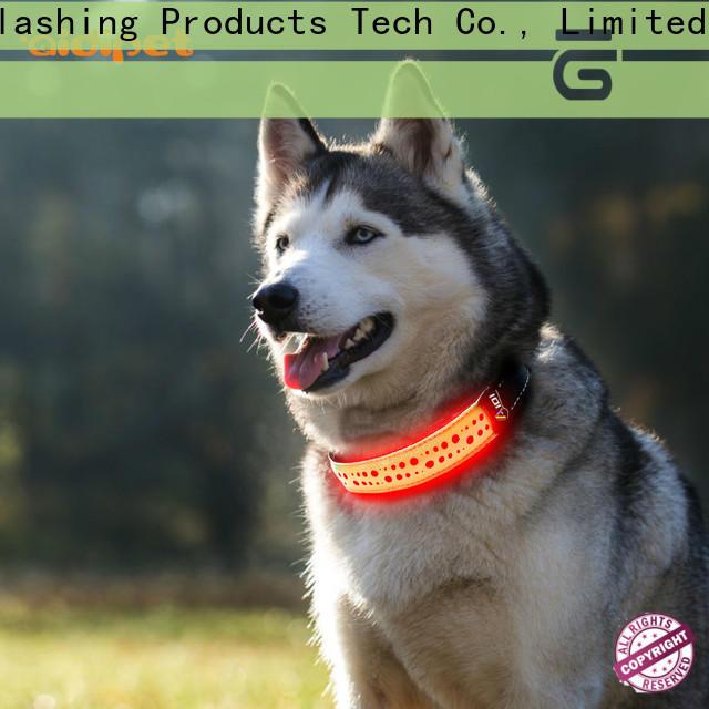 waterproof best glow in the dark dog collar design for park