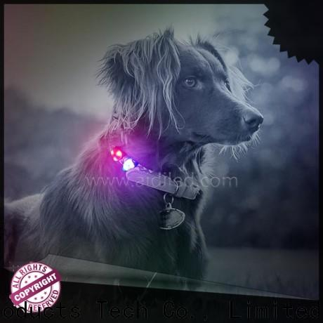 durable dog collar accessory personalized for