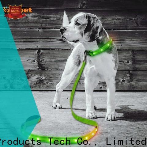 AIDI light up dog leash design for park