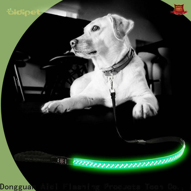 AIDI glow in the dark dog leash design for park