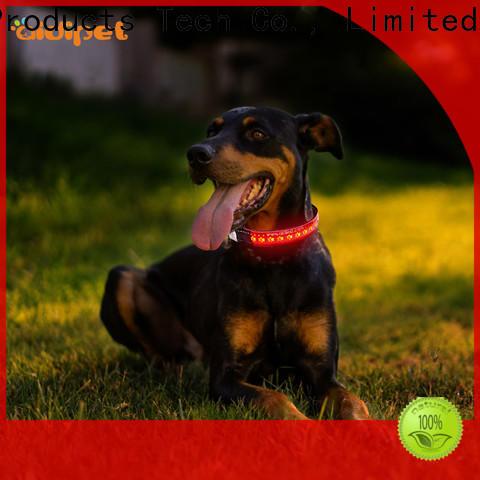 AIDI luminous dog collar inquire now for pet