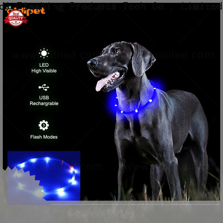 AIDI glowing dog collar inquire now for outdoors