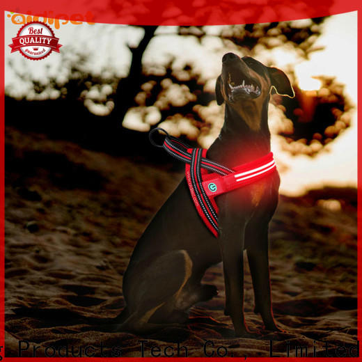 fishing net illuminated dog harness directly sale for outdoors