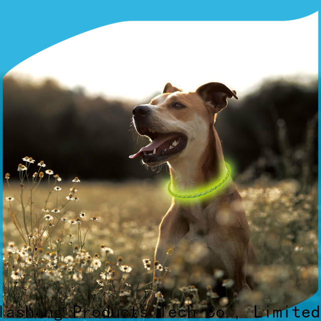 AIDI led dog collar waterproof design for outdoors