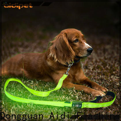 reflective dog leash with flashlight design for walking