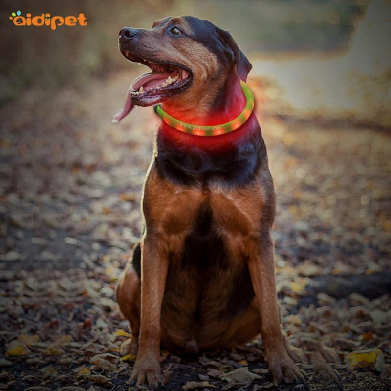 -Best Nylon Fish Filament Rechargeable Led Dog Collar Manufacture-1