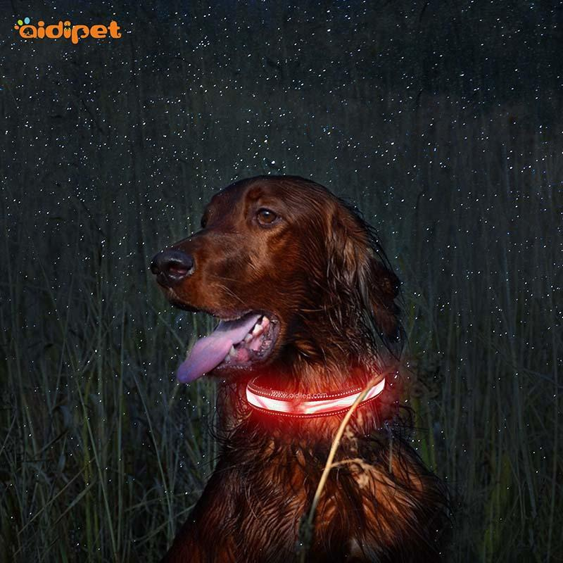 AIDI-Find Light Up Dog Collar Rechargeable Led Nylon Dog Collar From