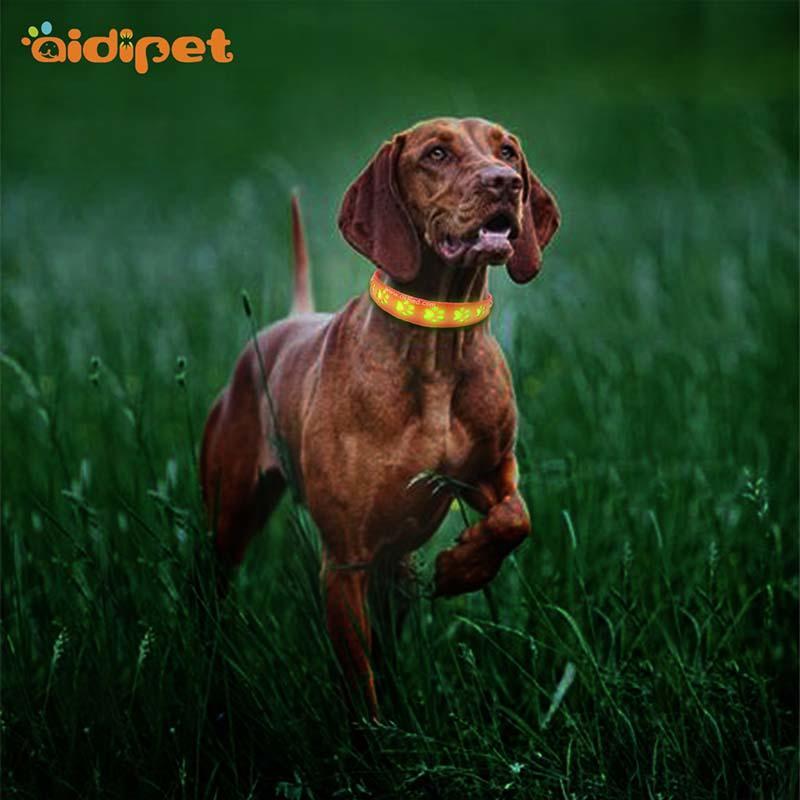AIDI-Best Waterproof Lighted Dog Collars Aidi-c20 Wholesale Pet