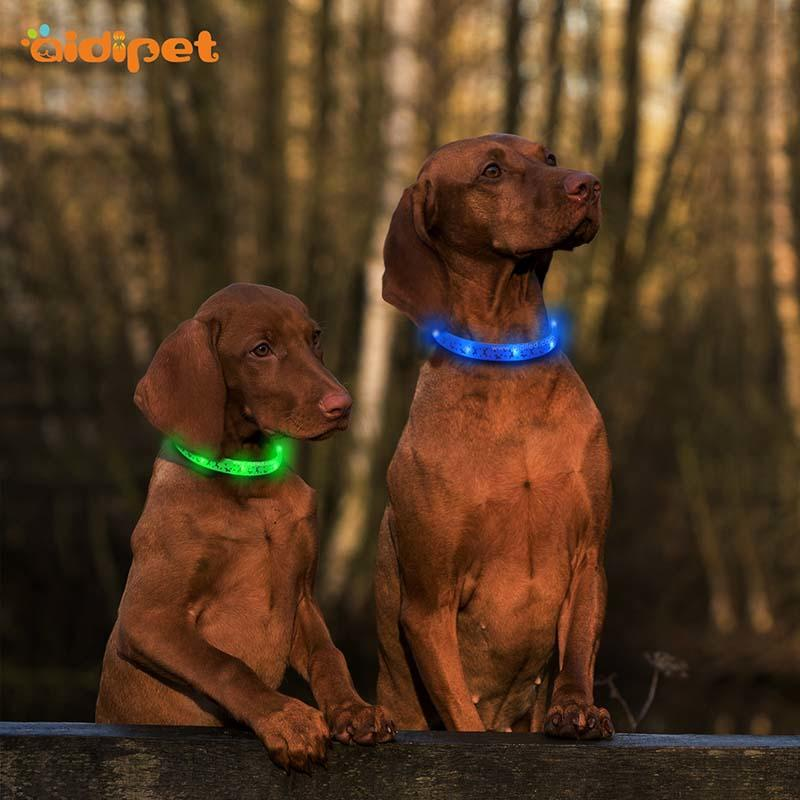 AIDI-Led Light Up Dog Collar Led Fashionable Dog Collar