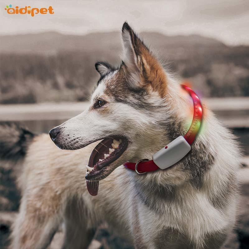AIDI rechargeable flashing dog collars factory for park-2
