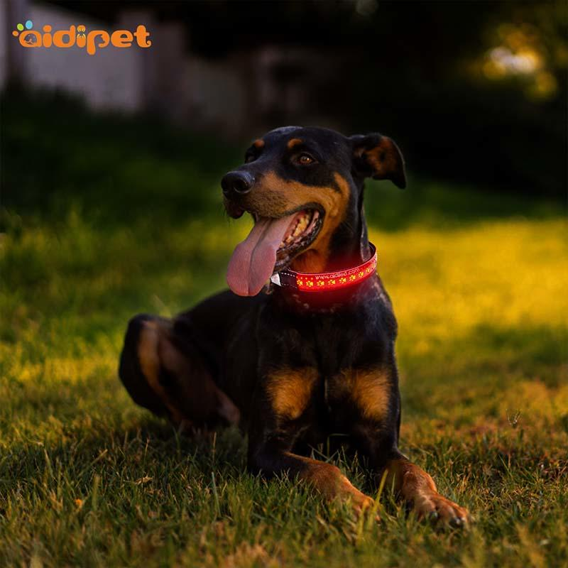 -Find Aidi-c14 Rechargeable Flashing Led Dog Collar | Manufacture-2