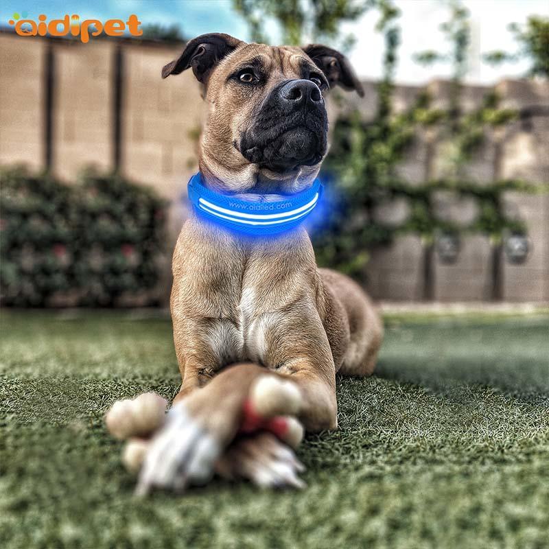 AIDI-Find Best Glow In The Dark Dog Collar Led Nylon Dog Collar From-1