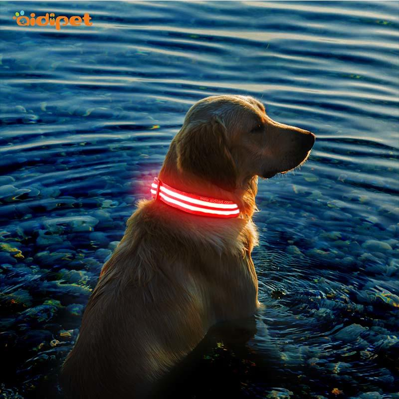 flashing rechargeable led dog collar with good price for outdoors-1