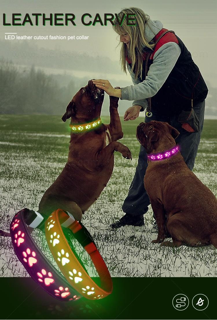 AIDI waterproof best glow in the dark dog collar inquire now for walking-3