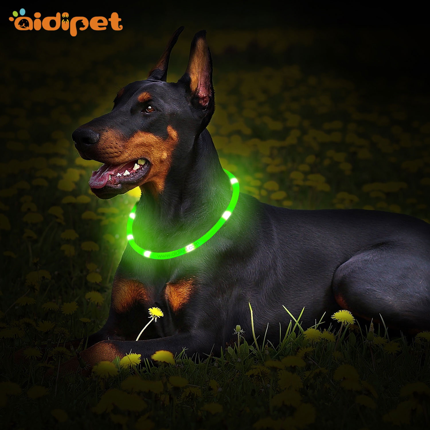 AIDI printing lighted dog collars inquire now for walking-AIDI-img-1