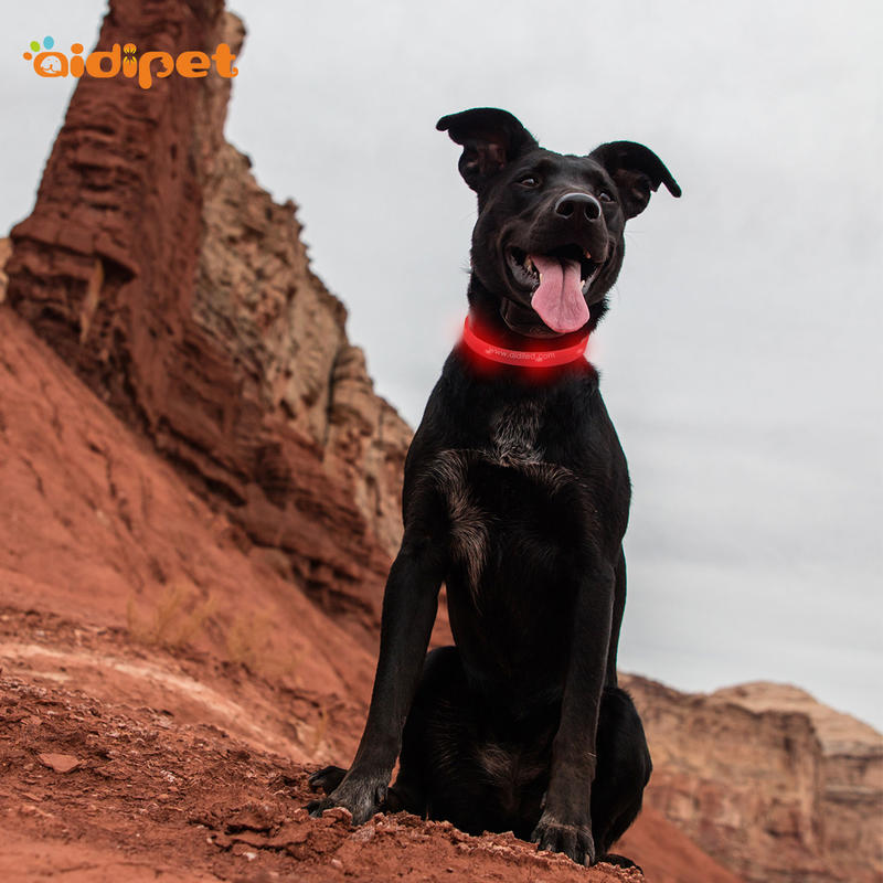 dog collars that light up in the dark safety AIDI