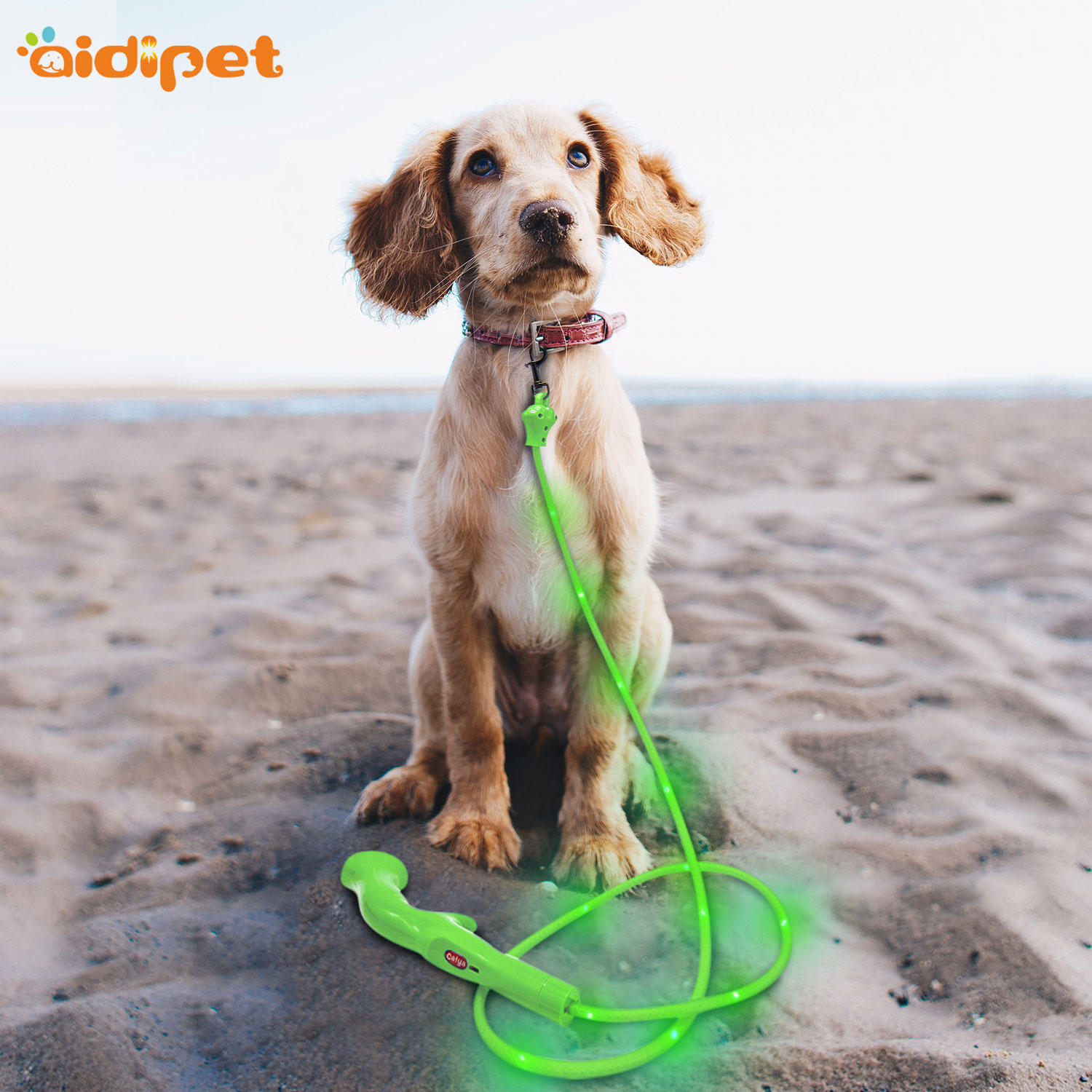Flat Led PVC Dot Light Dog Leash AIDI-L7
