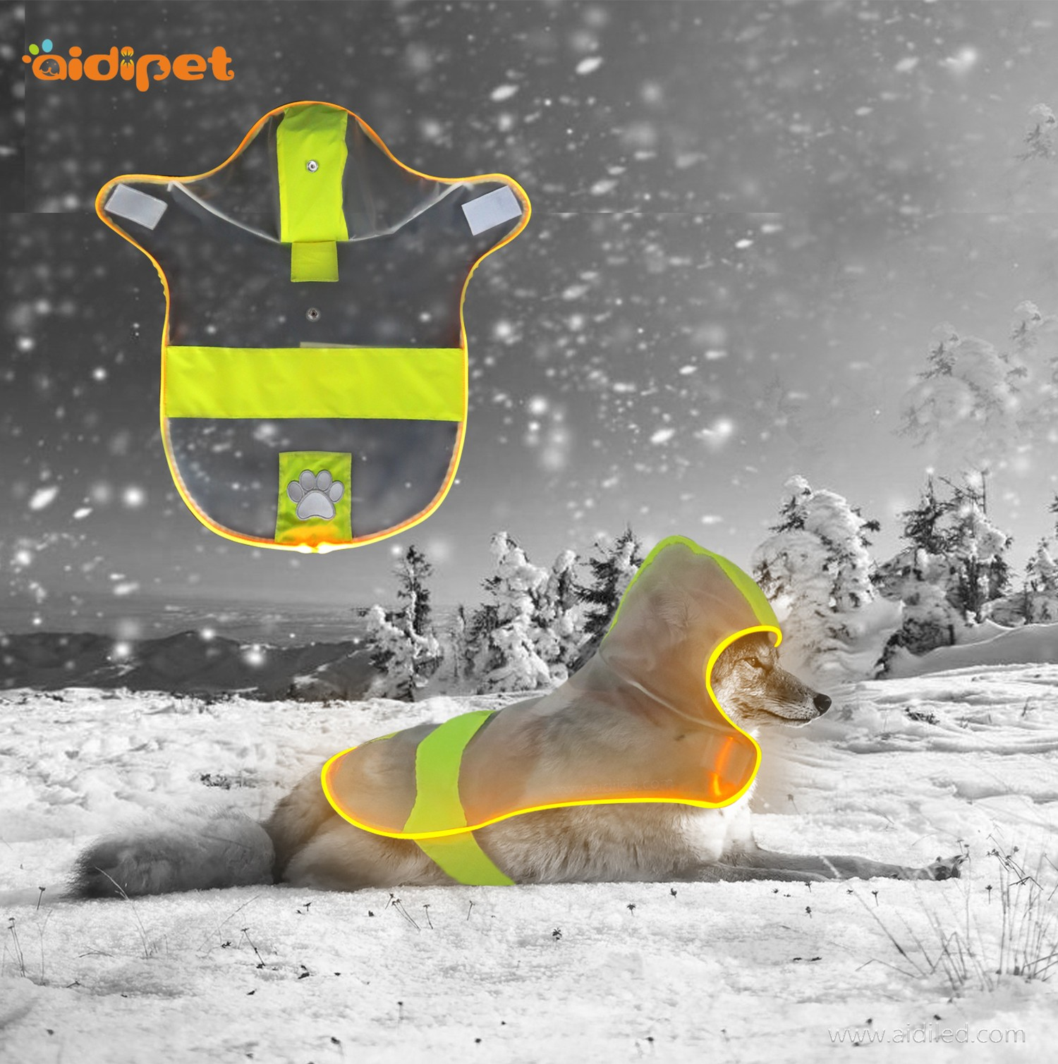 colorful glowing dog harness directly sale for street-1