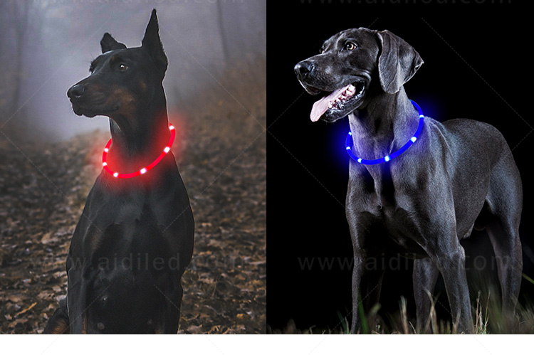 nylon led dog collar factory for park-14
