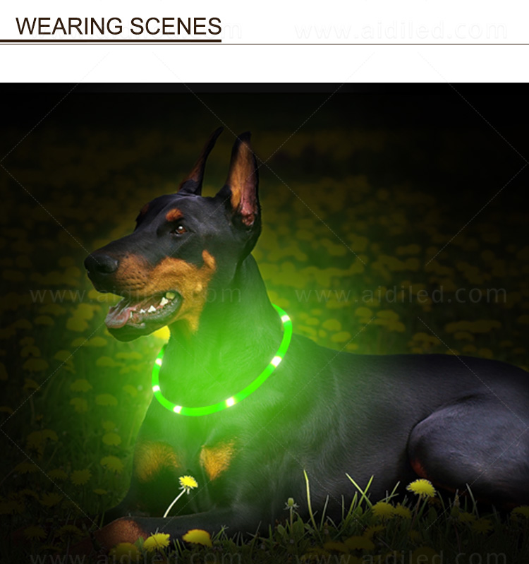 nylon led dog collar factory for park-13