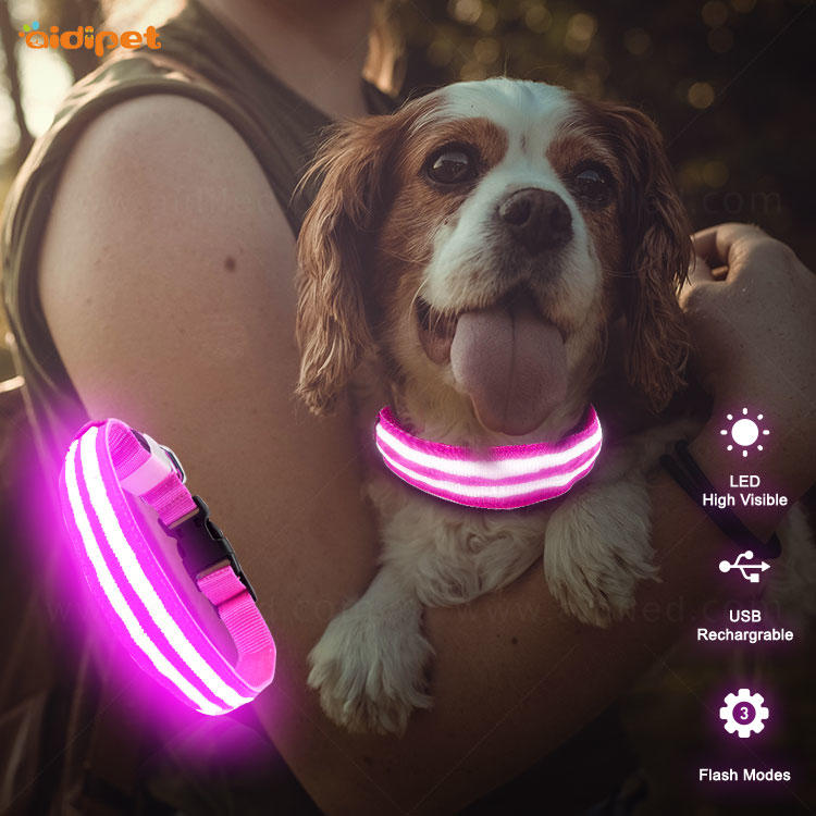 AIDI-C15 Personalized USB Rechargeable LED Dog Collar