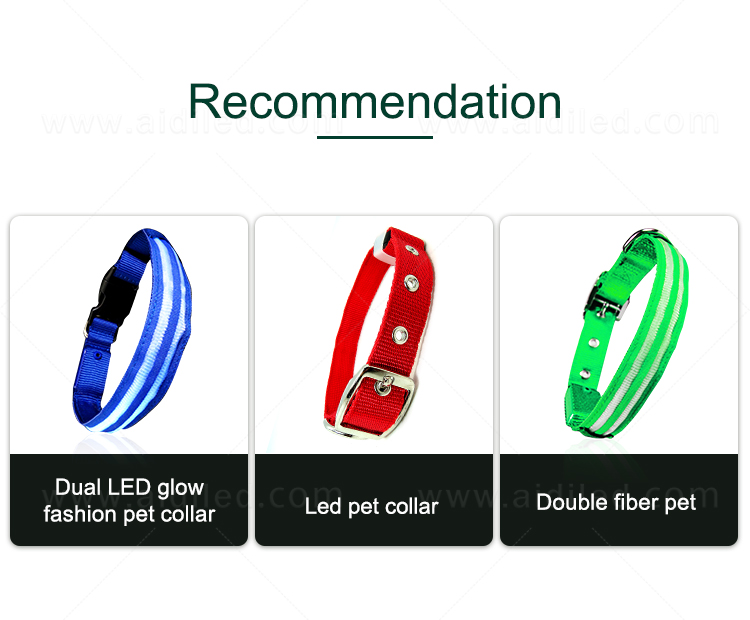 AIDI led dog safety collar design for park-4