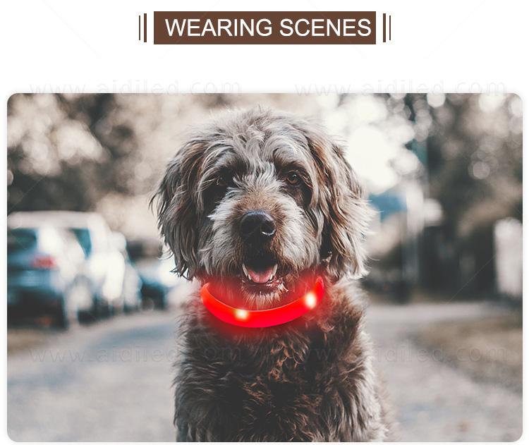 product-AIDI-AIDI-C5 Rechargeable Pet Led Dog Collar-img-2