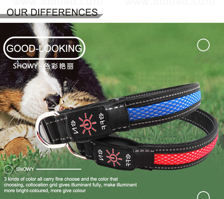 rechargeable best glow in the dark dog collar with good price for pet-5