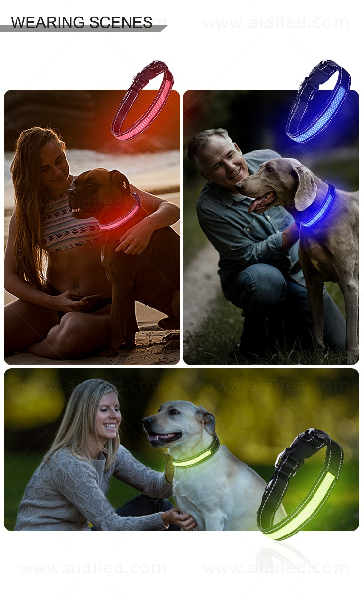 rechargeable best glow in the dark dog collar with good price for pet-16