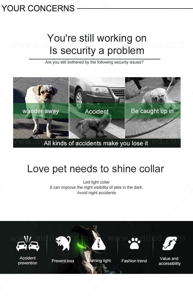 filament led dog collar waterproof with good price for pet-6