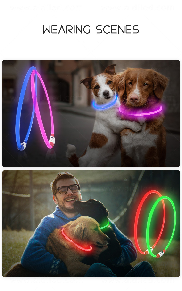 AIDI flashing led dog collar pendant light with good price for park-13
