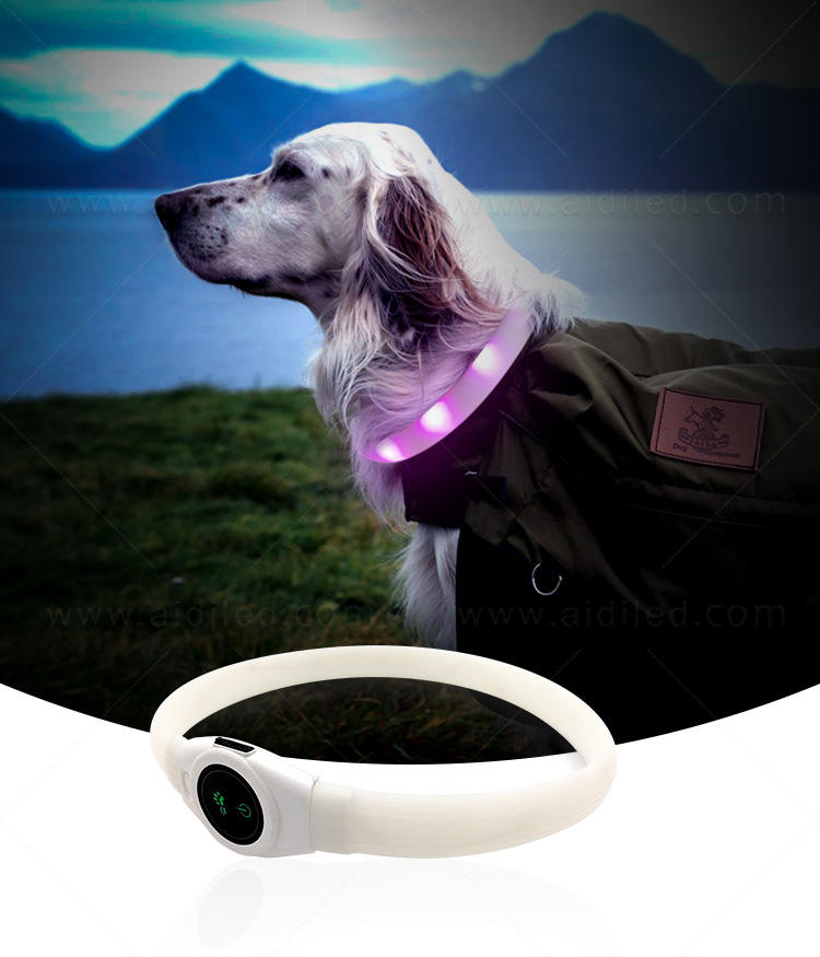 reflective lighted dog collars waterproof factory for park