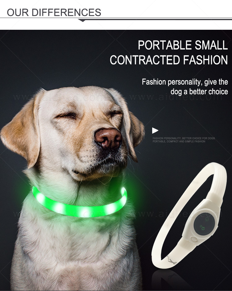 glowing led dog collar inquire now for walking-6