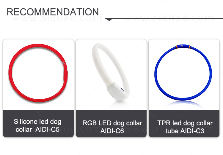 glowing led dog collar inquire now for walking-1